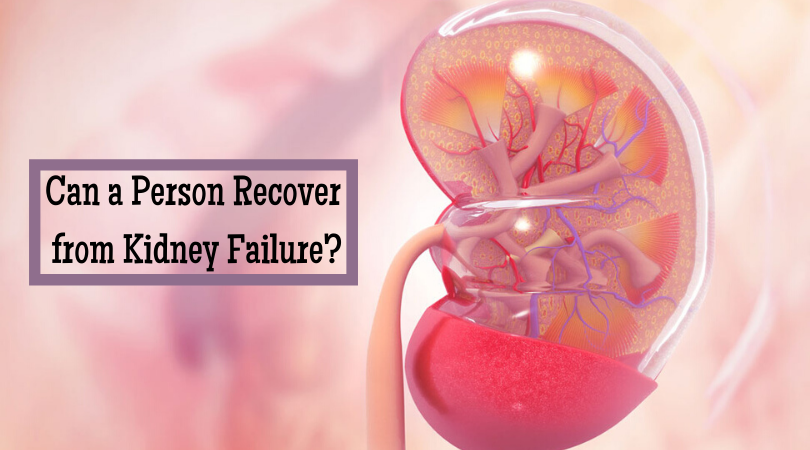 Can a Person Recover from Kidney Failure_